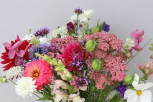 bouquet, wild and natural flowers