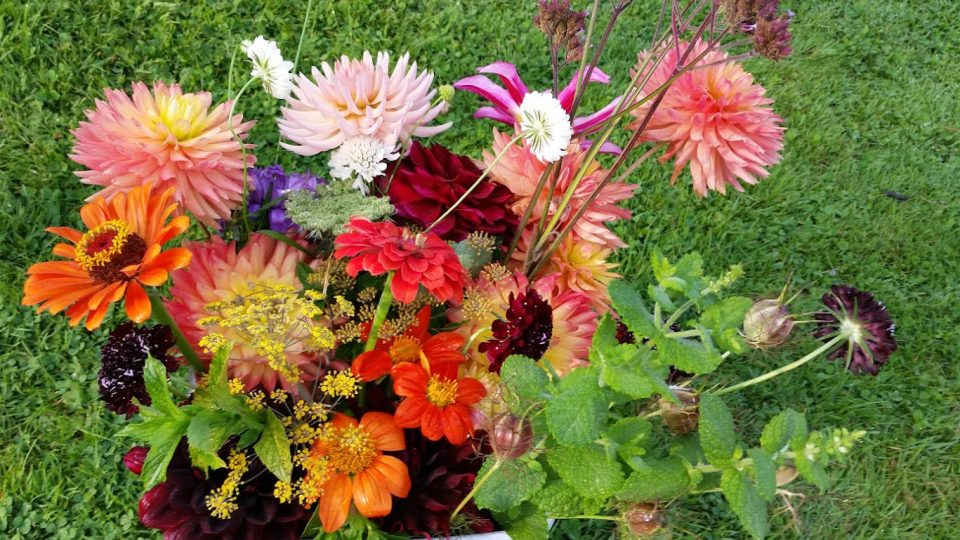 Gift vouchers and Flower Subscriptions