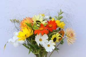 low carbon flowers, eco flowers,sustainable, regular delivery, B49 , CV37, Alcester, Stratford