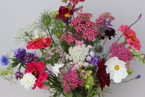 local flowers, sustainable, low carbon, wild flowers