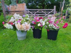 DIY buckets of flowers